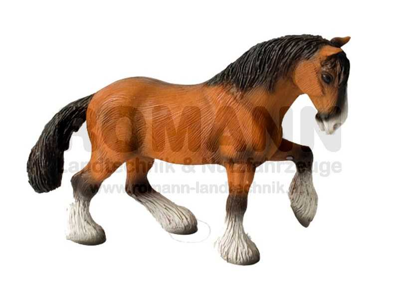 Shire Horse Wallach
