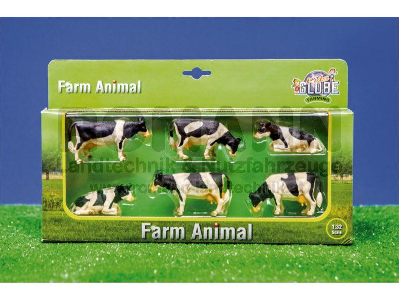 6 Kühe liegend und stehend